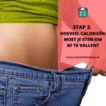 Stap 2: hoeveel calorieën moet je eten om af te vallen?